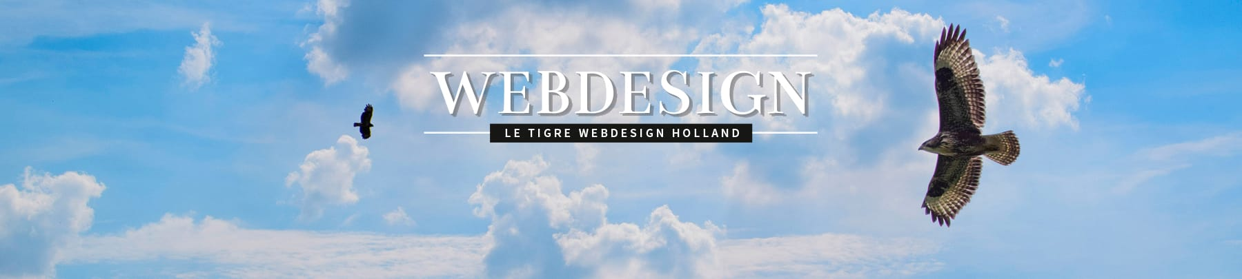 LeTigre Webdesign Holland