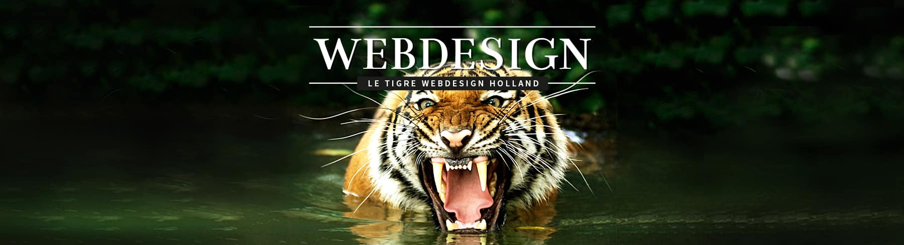 Webdesign Holland - websites maken die scoren in Google!