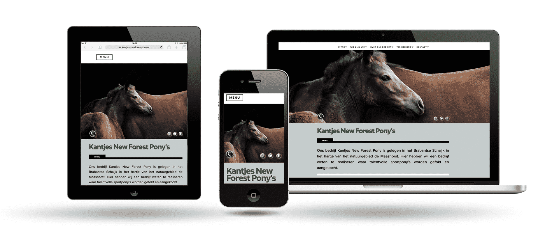 Kantjes New forest by Webdesign Holland